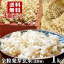 5%還元 大分県産 無洗米 手作り発芽玄米 お試し 1kg×...