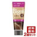 【送料無料】ビゲン(Bigen) カラートリートメント ナチュラルブラウン 180g×2個セット ホーユー(hoyu)