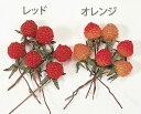 野イチゴ オレンジ (12本入り) 【花資材】【花材】【フルーツ】【ピック】【大地農園】