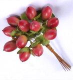 ヒペリカム レッド (24本入り) 【花資材】【花材】【フルーツ】【大地農園】1