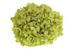 FLアンデスアジサイピスタチオグリーン(約20g入り)【プリザーブドフラワー】【アジサイ】【紫陽花】【花資材】【花材】【アスク】【florever】