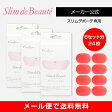 【メーカー正規品】スリムデボーテ専用交換用ゲルパッド3箱(交換6回分)/Slim de Beaute PAD 【送料無料】