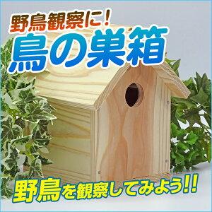 野鳥工作キットA(巣箱)【自由工作/自由研究】