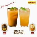 【初めての方限定】Craft Ginger S&M 80ml 高知 国産 生姜シロップ お試し 無添加 無着色 しょうが シ...