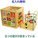 名前入り 知育玩具 1歳半 2歳 これ一つで5種類の 木のお...