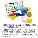 知育玩具 4歳「立体パズル」木のおもちゃ 木製玩具 エドインター 2