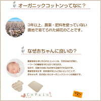 2重ガーゼのスリーパードレス。オーガニックコットン生地。寝冷え防止に役立つ日本製のベビースリーパー。キッズ・ベビー・マタニティ/ベビー/家具・ねんね/スリーパー/ダブルガーゼ/