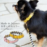 CRAZYBOO / クレイジーブーストライプ生地 カラーLサイズ犬服 / 犬の服/ ドッグウェア
