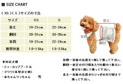puppy_set_02
