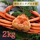 カニ 紅ズワイガニ 国産 タグ付き 香住ガニ 約2kg (約...
