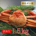 カニ 訳あり 香住ガニ 約1.5kg(約500×3杯) 兵庫...