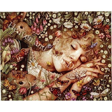 クロスステッチ刺繍 キット Heaven And Earth Designs(HAED) - Princess Asleep