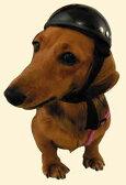 小型犬・猫用 アニマルヘルメット DAMMTRAX ダムトラックス ヘルメット 動物用