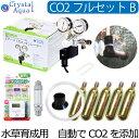 クリスタルアクア CO2フルセット Bタイプ 【自動CO2添加】(スピコン+電磁弁一体型CO2レギュレーター、タイマー他付属)