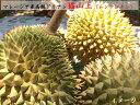 ドリアン 【猫山王】マレーシア産 高級榴蓮(冷凍)300g×3パックセット 2