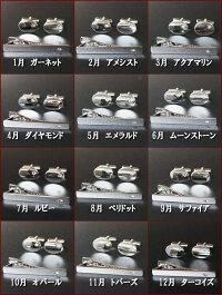 選べる12石誕生石カフスネクタイピンンセット【楽ギフ_包装】【あす楽対応_関東】プレゼント・ギフトにおすすめ【送料無料】