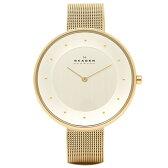 スカーゲン SKAGEN 時計 腕時計 スカーゲン SKAGEN 腕時計 時計 SKW2141 MESH ステンレスメッシュ ウォッチ ゴールド/シルバー