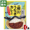 【送料無料】福岡ご当地カレー福岡柳川うなぎカレー200g×10食まとめ買いセット