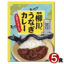 福岡ご当地カレー福岡柳川うなぎカレー200g×5食まとめ買いセット