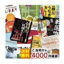 【送料無料】訳ありご当地カレー 10種類詰め合わせ 4000円福袋