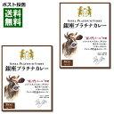 【ポスト投函送料無料】虎ノ門バール特製銀座プラチナカレービーフ200g×2食お試しセット