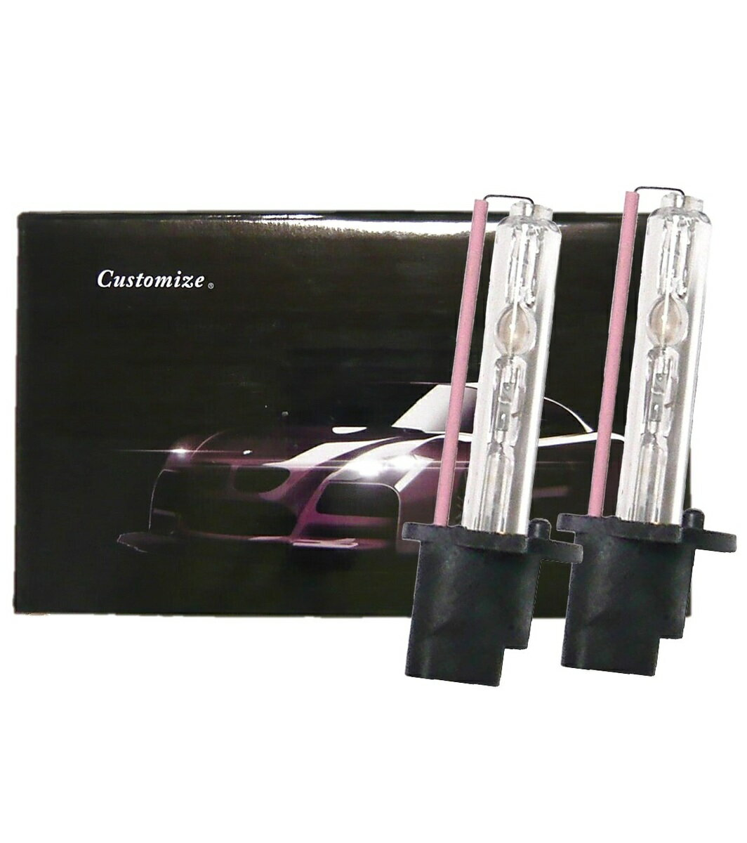 ライト・ランプ, ヘッドライト  H3 55W 8000K HID 2 1