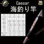 Caesar2.4m����ѥ��Ȼ���ξ��ѥ����ɥ�åɥե��å��奰�ȷ�����ȴ������Ф�����ѥ��ȥ�å���ȳ����ե��å���������Υ��������