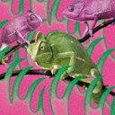 【ポイント10倍】赤い公園/消えない − EP[ESCL-5167]【発売日】2019/10/23【CD】