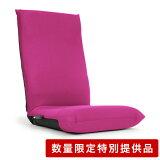 特別提供品 座椅子 ハイバック レバー マルチ リクライニング シンプル レバー式モノ 機能性座椅子「プレゼント」 「ギフト」 「おすすめ」 「父の日」