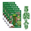 【 日本山人参 100錠 × 5袋セット】 約2ケ月半 サプ...