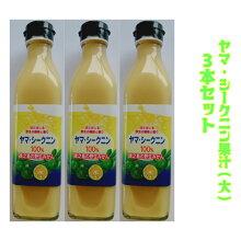 【ヤマ・シークニン果汁300ml】シークニン果汁100%シークワーサー徳之島奄美沖縄