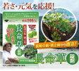長命草 錠剤 2袋セット 勇田薬草園