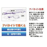 薬用シェルピカ1本(80g)※あす楽【HLS_DU】