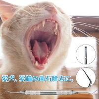 【スーパーSALE限定20%OFF】【メール便で送料無料】《代引き不可》【歯石取り】【ヤニ取り】スケーラー(ホータイプ)愛犬や愛猫の歯石取りに便利《今なら犬用猫用歯ブラシ/Ciシュワワ/1本おまけ付》