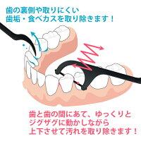 【メール便で送料無料】DENTARIST歯間フロスBLACK1袋(50本入)≪代引き決済不可≫【ポイント消化】