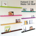 Postcard CD & DVD Display Wall Shelf /ディスプレー ウォール シェルフ(カフェスタイルのポ...