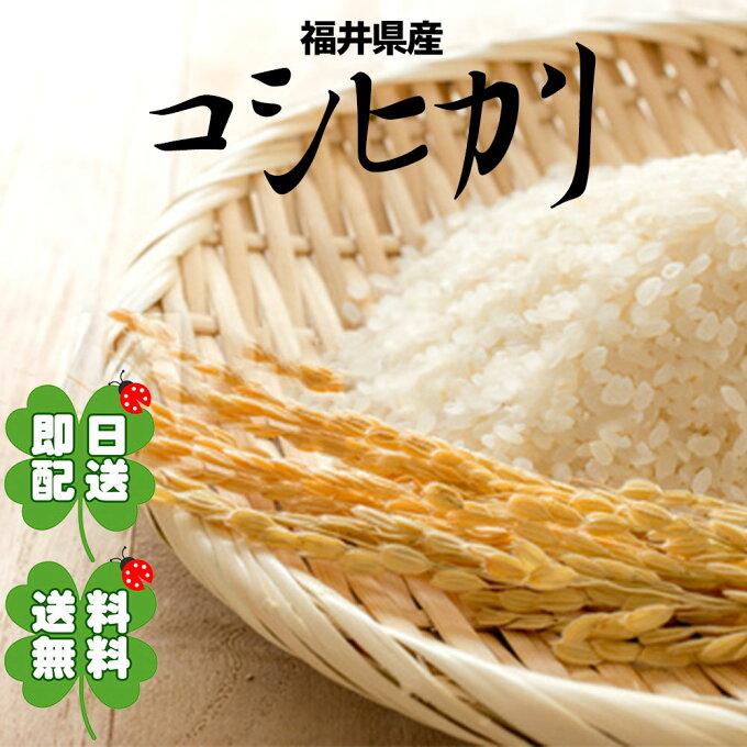 送料無料 コシヒカリ 福井県産 10kg 毛利米穀 令和2年 米 お米 令和2年産...