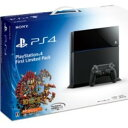 2014/2/22に発売予定Playstation 4 First Limited Pack (プレイステーション4専用ソフト KNACK ダウンロード用 プロダクトコード 同梱)