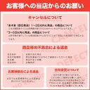 【5月15日限定 全商品ポイント3倍】JVCKENWOOD JVC エブリオ専用ブルーレイライター CU-BD50 3
