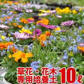草花・花木の実りの培養土10L大郷屋オリジナルブレンド培養土植物の土