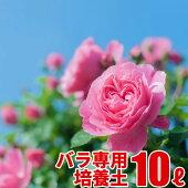 バラの実りの培養土10L大郷屋オリジナルブレンド培養土植物の土
