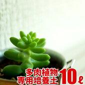多肉植物サボテンの実りの培養土10L大郷屋オリジナルブレンド培養土植物の土