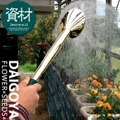 園芸用散水ノズルG61(穴大)プロ用園芸用総真鍮製