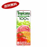 トロピカーナ100%フルーツブレンドキリン250ml紙パックLLスリム