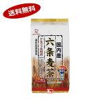 【送料無料1ケース】国内産麦使用 六条麦茶 日東食品工業 (9g×20袋)×20個入★北海道、沖縄のみ別途送料が必要となります