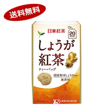 【送料無料1ケース】しょうが紅茶ティーバッグ 日東紅茶(三井農林) (2.2g×20本)×48個★北海道、沖縄のみ別途送料が必要となります