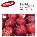 【送料無料】ガラりんご、ジャズりんご ニュージーランド産 約8.7kg 50玉入★一部、北海道、沖縄のみ別途送料が必要となる場合があります