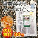 【メール便で送料無料♪】ハトムギ茶100%ティーパック(10g)×30包【明和生薬(愛知県)】