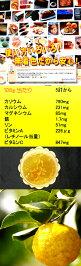 【徳用サイズ】【送料無料♪】柚子の香り960g愛媛県産無着色【丸山食品(愛媛県)】【ゆずの香り】【smtb-TD】【tohoku】