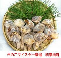 【送料無料】おまかせ松茸食べきりセット250g【smtb-tk】